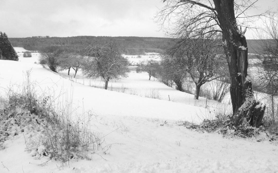 Ein normaler Wintertag